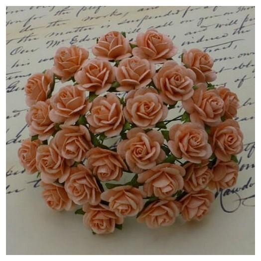 Λουλούδια PEACH ROSES, 20mm