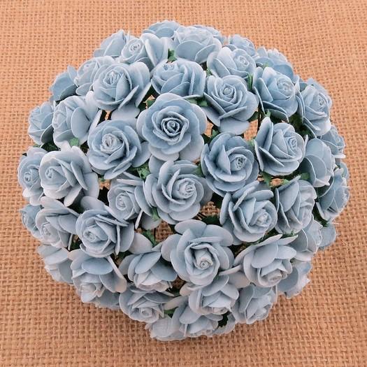 Λουλούδια BABY BLUE ROSES, 20mm