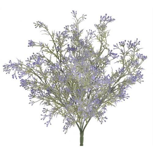 Διακοσμητικό φυτό, violet, 50cm