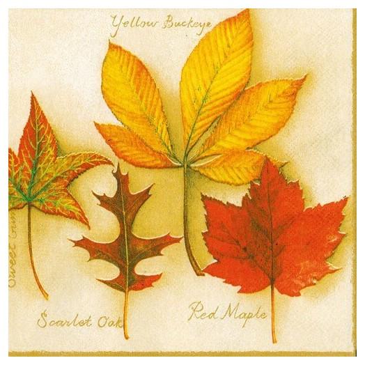 Χαρτοπετσέτα για Decoupage, Autumn Leaves Creme, 1 τεμ