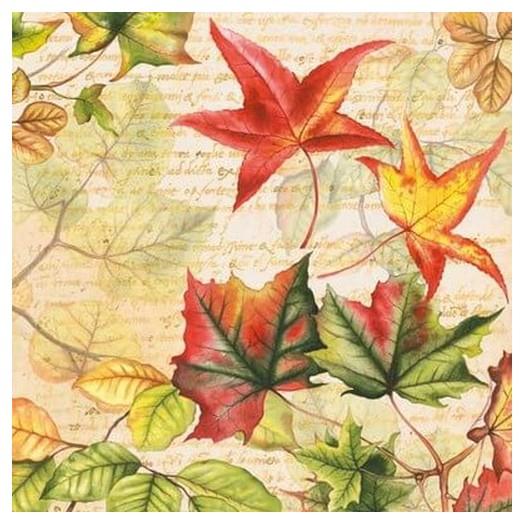 Χαρτοπετσέτα για Decoupage Autumn Time, 1 τεμ