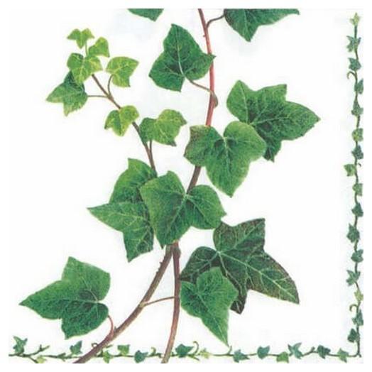 Χαρτοπετσέτα για Decoupage Ivy Tendril, 1 τεμ