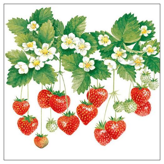 Χαρτοπετσέτα για Decoupage, Summer Fruits 1 τεμ