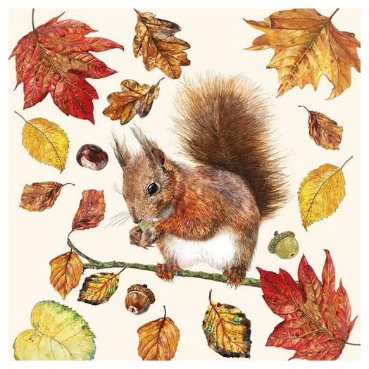 Χαρτοπετσέτα για Decoupage, Eating Squirrel , 1 τεμ