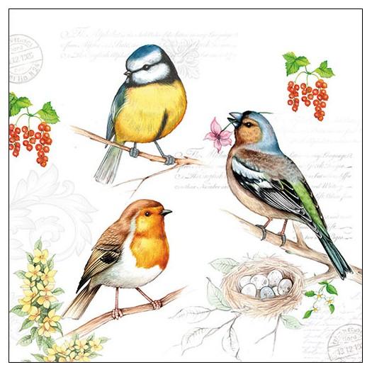 Χαρτοπετσέτα για decoupage, Birds On Twig, 1 τεμ.