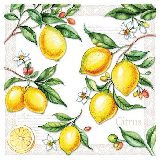 Χαρτοπετσέτα για Decoupage, Citrus 1 τεμ