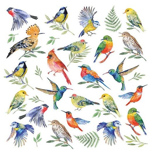 Χαρτοπετσέτα για Decoupage, Birds Votes, 1 τεμ