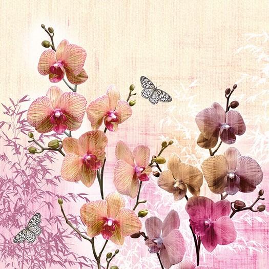 Χαρτοπετσέτα για Decoupage, Orchids Orient 1 τεμ.