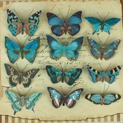Πεταλούδες με κλιπ, 12 τεμ, blue