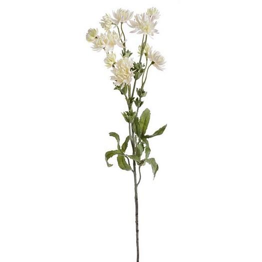 Λουλούδι αστραντία, 66cm, ivory
