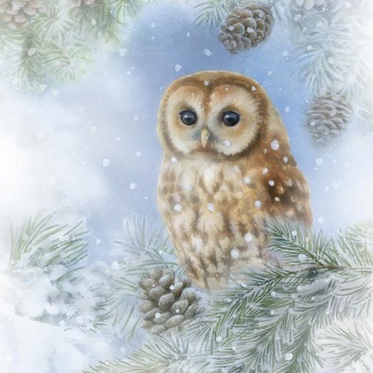 Χαρτοπετσέτα για Decoupage, Tawny Owl, 1τεμ.