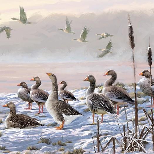 Χαρτοπετσέτα για Decoupage, Winter River Geese, 1τεμ.