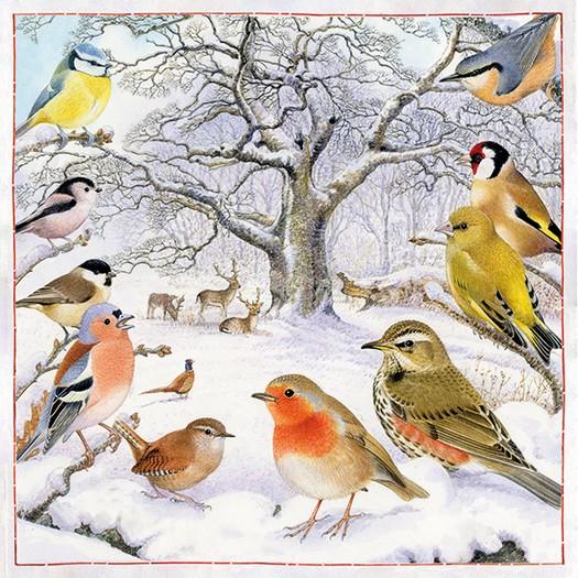Χαρτοπετσέτα για Decoupage, Bird Meeting, 1τεμ.