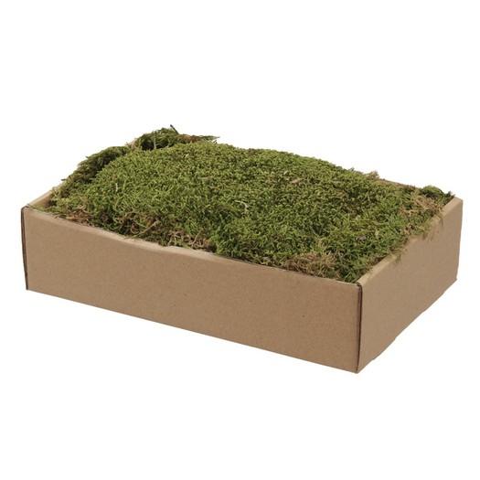 Mood moss, natural, +/-140gr