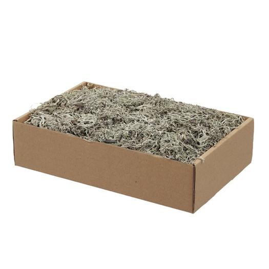 Flat grey moss, natural, 150gr