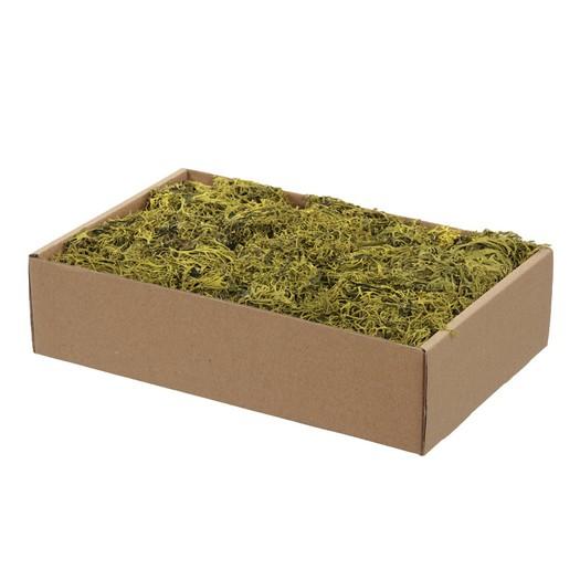 Grey moss, green 150gr