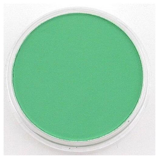 Χρώμα Panpastel ,Permanent Green