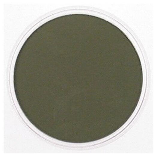 Χρώμα Panpastel , Yellow Green Extra Dark