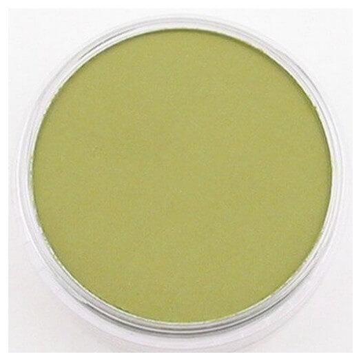 Χρώμα Panpastel ,Bright Yellow Green Shade