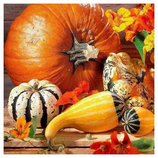 Χαρτοπετσέτα για Decoupage Pumpkins , 1τεμ
