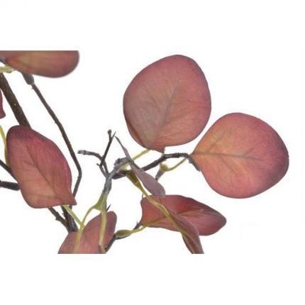 Ευκάλυπτος κλαδί, 70cm, red