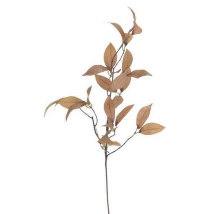 Φυλλώδες κλαδί, 83cm, brown