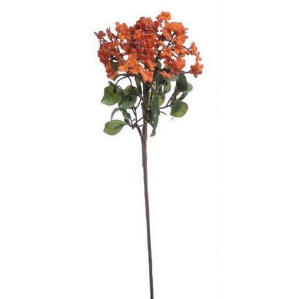 Λουλούδι κεράκι (χόγια), 40cm, orange