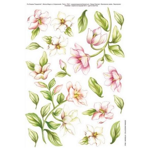 Χαρτί για Decoupage, Magnolia