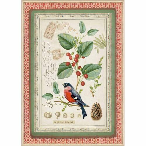 Ριζόχαρτο Stamperia 21x29cm A4,  Winter Botanic Little bird on holly