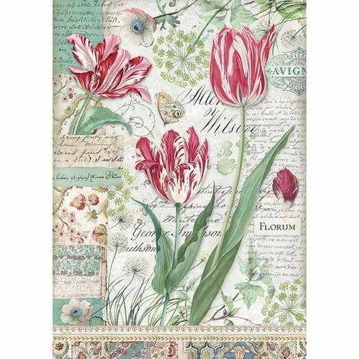 Ριζόχαρτο Stamperia 21x29cm A4, Red Tulip