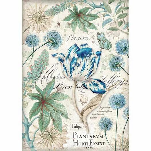 Ριζόχαρτο Stamperia 21x29cm A4, Blue Tulip