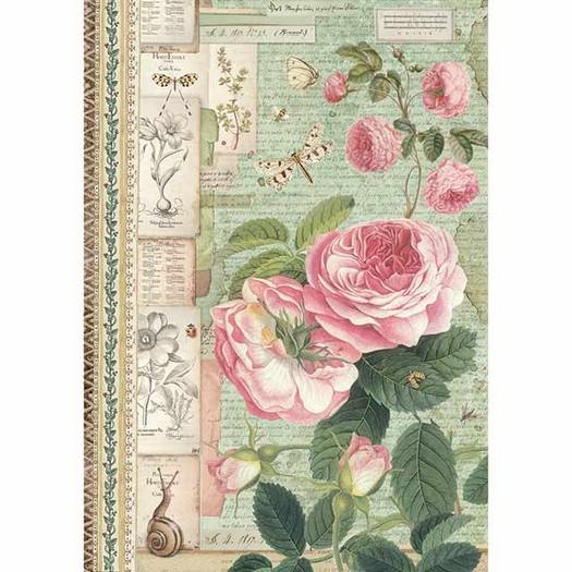 Ριζόχαρτο Stamperia 21x29cm A4, English Roses with snail