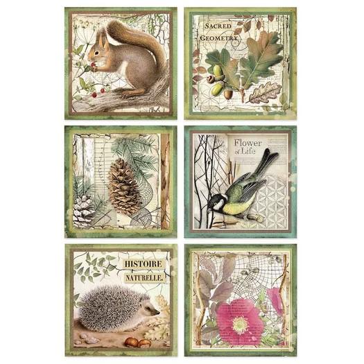 Ριζόχαρτο Stamperia 21x29cm A4, Forest framed animals