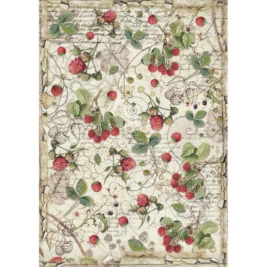 Ριζόχαρτο Stamperia 21x29cm A4, Forest raspberry