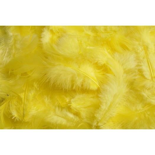Φτερά πακέτο 10gr, yellow