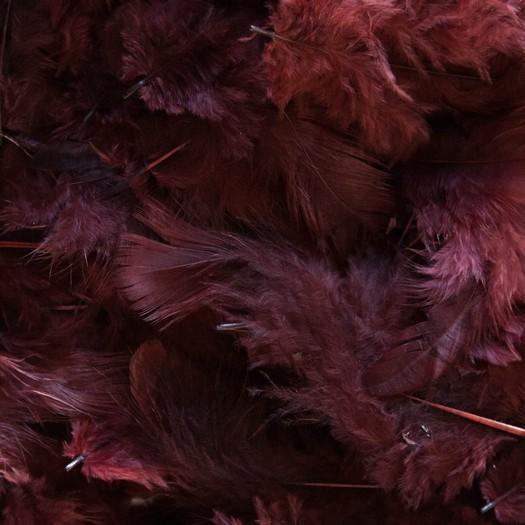 Φτερά πακέτο 10gr, bordeaux-brown