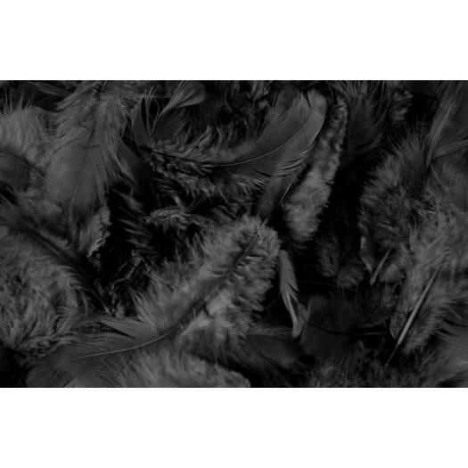 Φτερά πακέτο 10gr, black