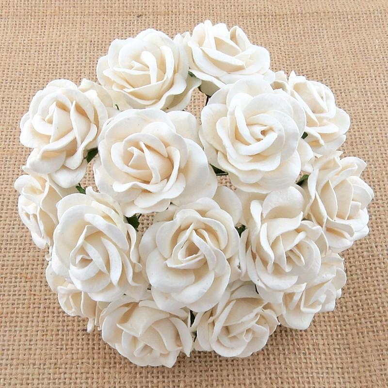 Λουλούδια WHITE CHELSEA ROSES, 35mm