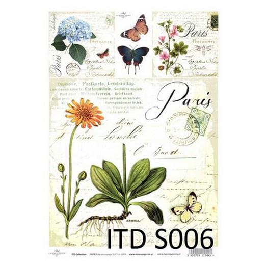 Χαρτί Soft ITD 21x29cm