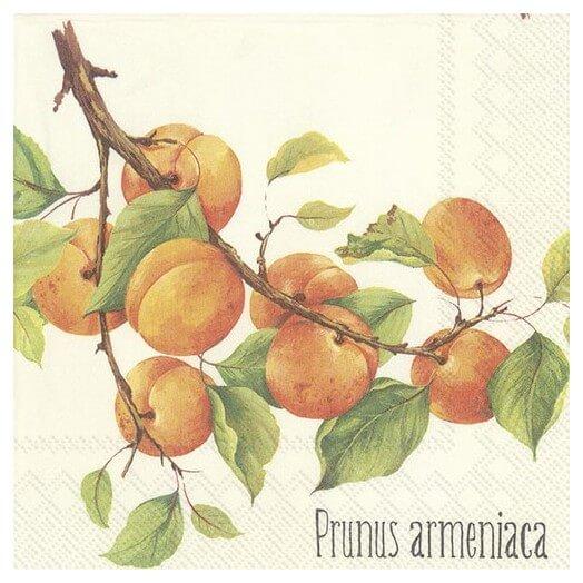 Χαρτοπετσέτα για Decoupage,  Prunus armeniaca, 1τεμ.