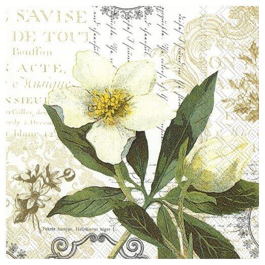 Χαρτοπετσέτα για decoupage, La beauté blanche white