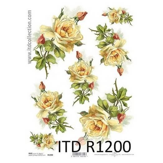 Ριζόχαρτο ITD Collection, 21x29cm, R1200