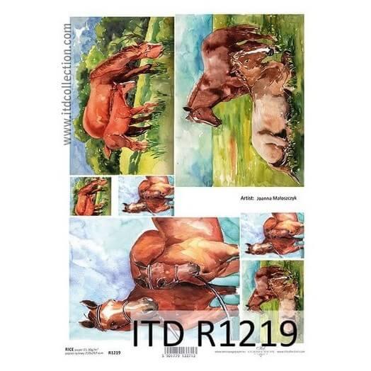 Ριζόχαρτο ITD Collection, 21x29cm, R1219