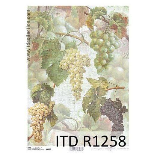 Ριζόχαρτο ITD Collection, 21x29cm, R1258