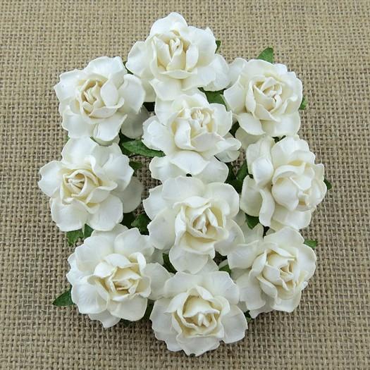 Λουλούδια WHITE COTTAGE ROSES, 25mm