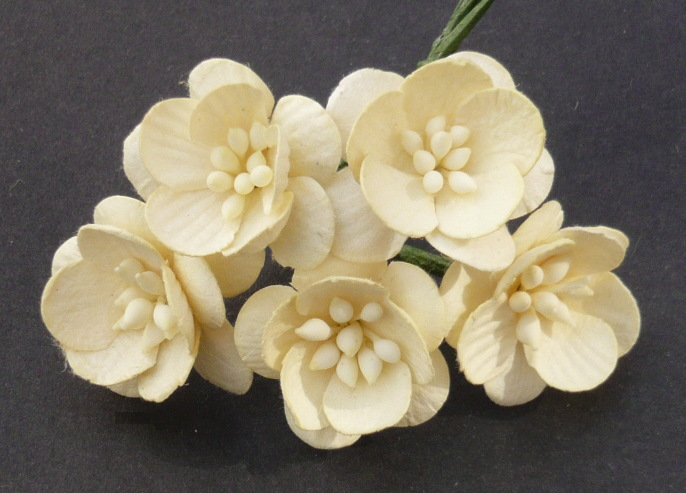 Λουλούδια IVORY CHERRY BLOSSOMS, 25mm