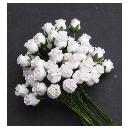Λουλούδια WHITE HIP ROSE BUDS