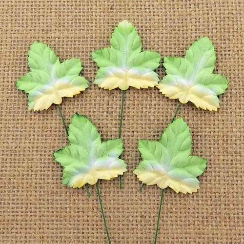 Φυλλαράκια σφενδάμου Green/White 45mm, 10 τεμ.