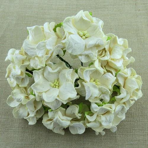 Λουλούδια DARK IVORY GARDENIA, 35mm, 5 τεμ.