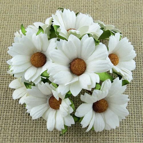 Λουλούδια Χρυσάνθεμα 5τεμ., 35mm